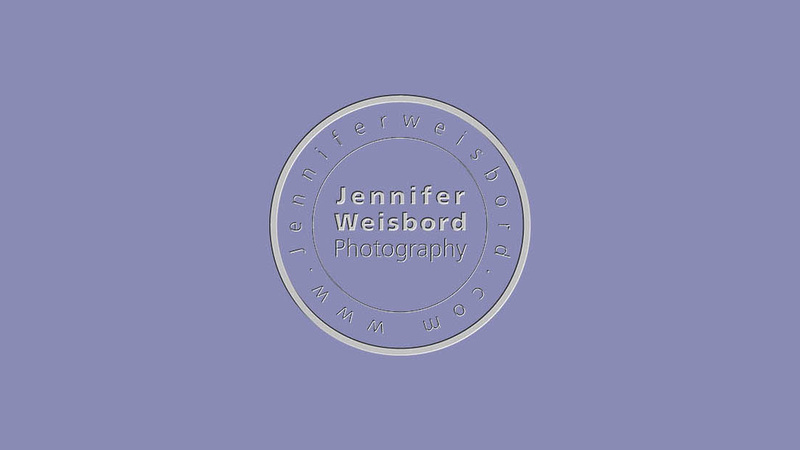 watermarklogo_lilac2